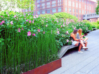 High Line Park en Nueva York - Paseo