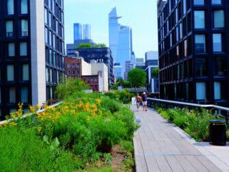 Parques en Nueva York - Verano en High Line Park