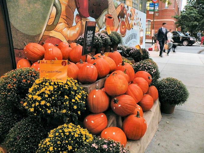 Halloween en NYC - calabazas