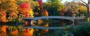 Central Park Movie Tour - Bow Bridge