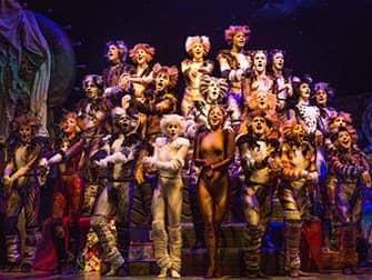 Tickets para Cats en Broadway - Manada