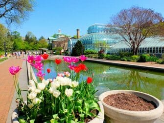 Jardines botánicos en Nueva York -Brooklyn Botanic Garden