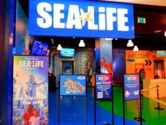 American Dream Mall cerca de Nueva York - SEA LIFE Aquarium